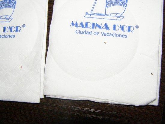 Marina d'Or Gran Duque: Escritorio lleno de hormigas, como el resto de la habitación.