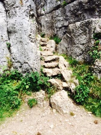 Photo of Fairy Steps