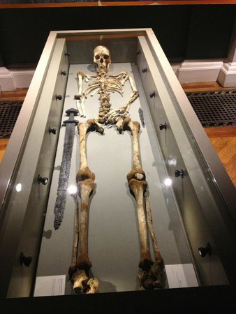National Museum of Ireland - Archaeology: National Irish Museum5