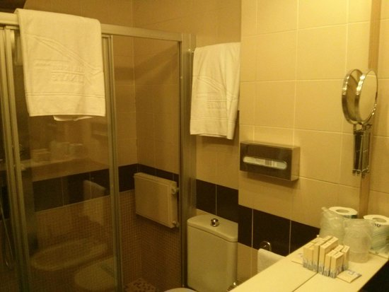 Air Hotel Linate: Bagno