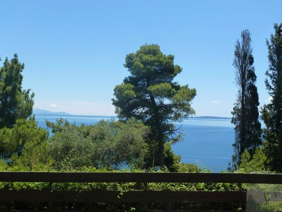 Corfu Holiday Palace: This was the view from the lawn of our bungalow