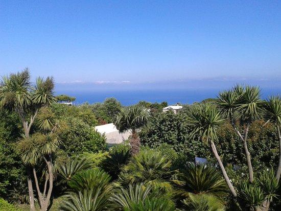Villa Damecuta: colazione con vista, dalla terrazza