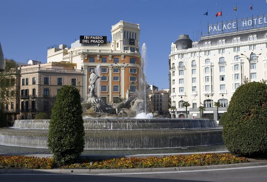 Room Picture Of Nh Collection Paseo Del Prado Madrid