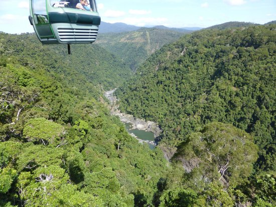 Skyrail Rainforest Cableway: On the skyrail