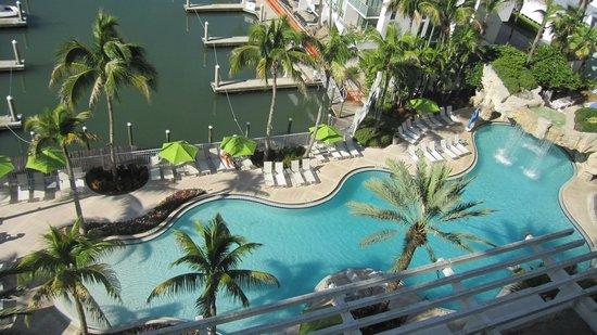 Hyatt Regency Sarasota: Pool Area