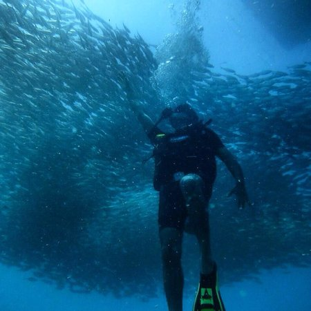 Discovery Dive Centre: Koh Tao, hubby enjoying it