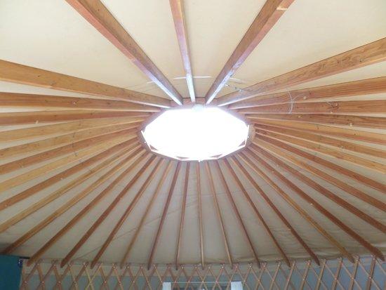 Bothe-Napa State Park: Sun/Moon Roof