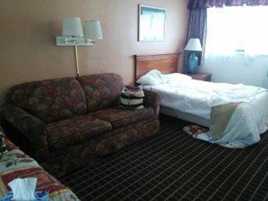 Van Ness Inn Hotel : Sofa (stained) and one of the dreadful beds