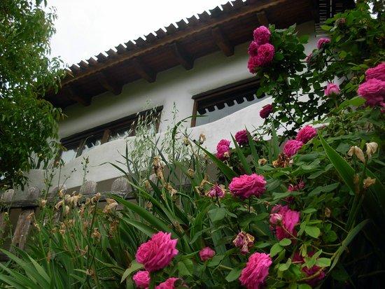 Casas Rurales en Yeste Los Ahijaderos de Tus: Casas Rurales con vistas panorámicas