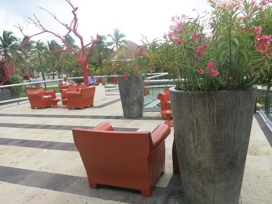 Grand Oasis Cancun: бар под открытым небом только для GRAND