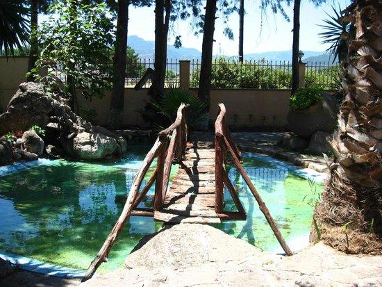 Malemi Organic Hotel: A pond