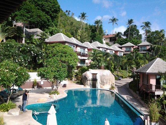 Merit Wellness & Mind Retreat Resort Samui: ห้องพักของเรา ห้องแรกติดสระ