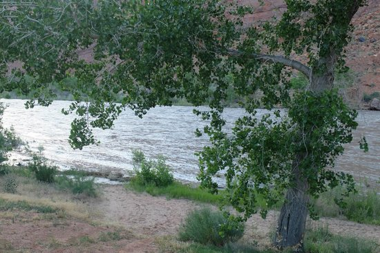 Red Cliffs Lodge: View to the River from Double Cabin