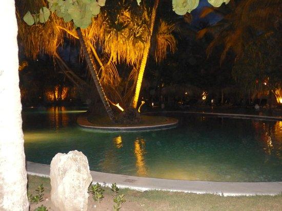Paradisus Punta Cana Resort : Sin palabras