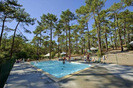 La piscine photo de camping de la dune bleue carcans for Camping cote bleue avec piscine