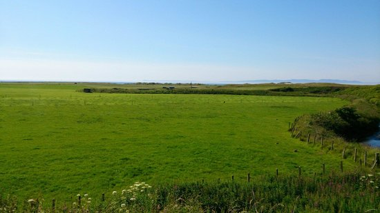 Machrihanish Holiday Park: The view from the Bell Tent back door.