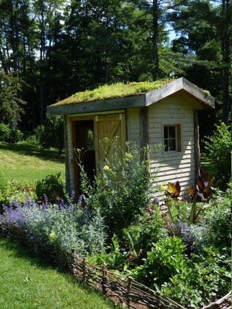 Berkshire Botanical Garden: Shed with roof garden