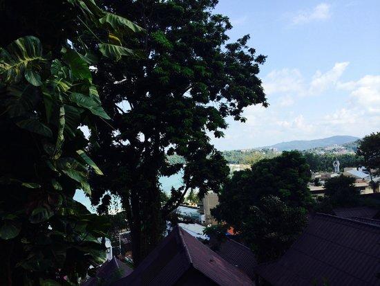 Kata Hi View : вид из А10