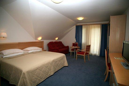 Jezero Hotel: Deluxe room