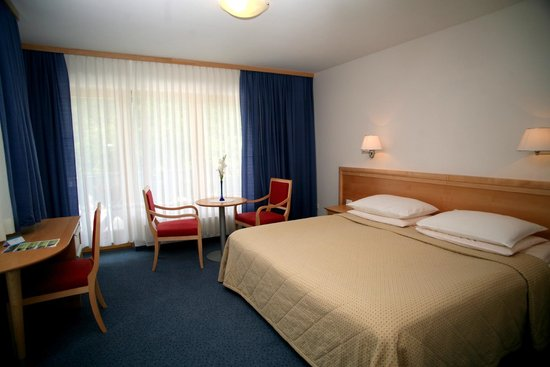 Jezero Hotel: Superior room