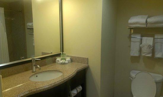 Holiday Inn Express Hotel & Suites Orlando - International Drive: Bathroom