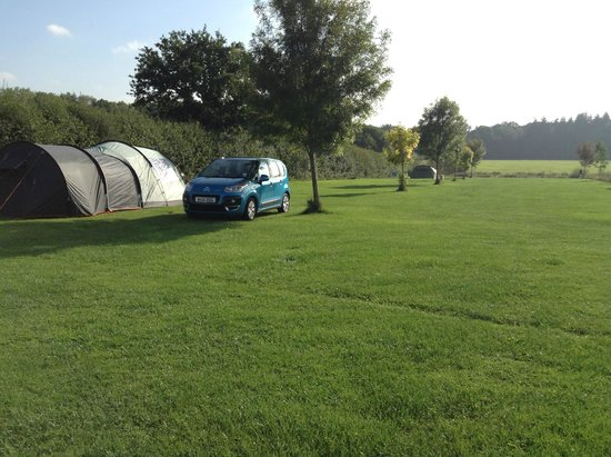 Hill Cottage Farm Camping & Caravan Park: Camping & Touring Field