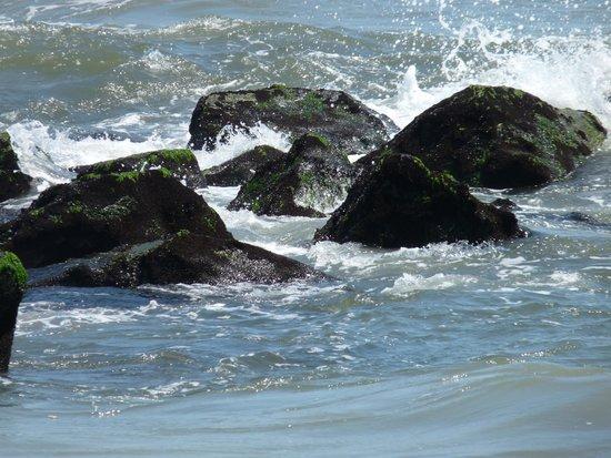 Ocean City Beach: The rocks.