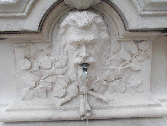 Rue de la Republique: Фонтан на улице