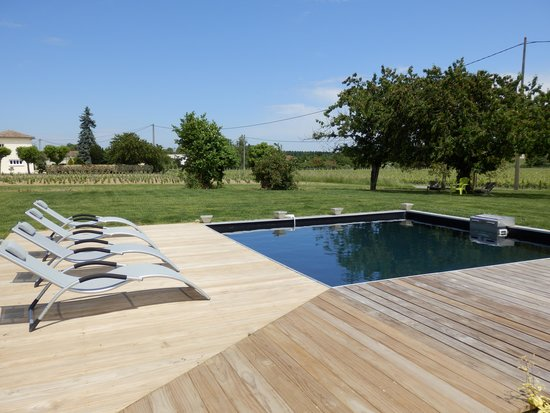 Chateau la Mothe du Barry: Piscine avec terrasse