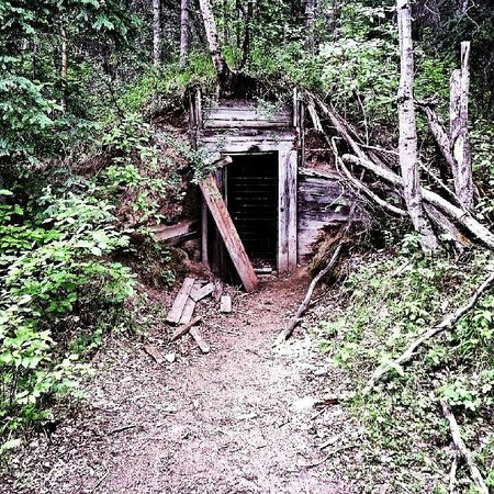 Pocahontas Cabins: Miners Cave on the Pocahontas trail