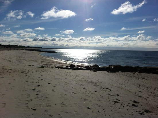 Surfcomber on the Ocean: The Beach