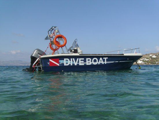 Paradise Studios & Apartments: Our Diving Boat
