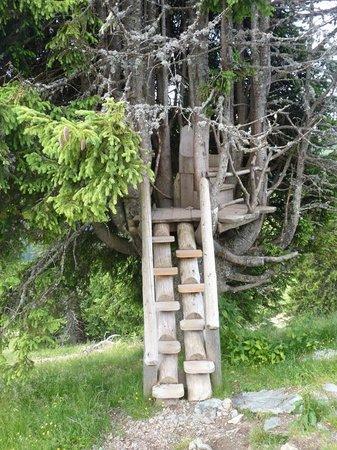 Ellmis Zauberwelt: Just a little climb