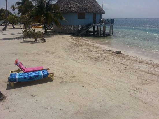 Blackbird Caye Resort : The view from the steps of Cabana # 7