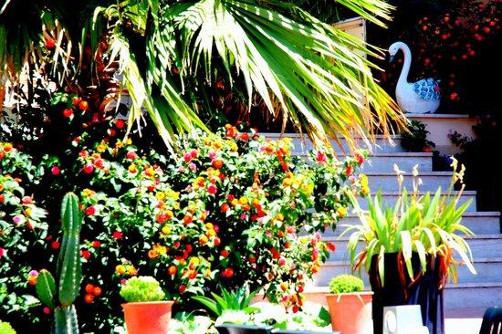 crystal garden massage sunnyvale
