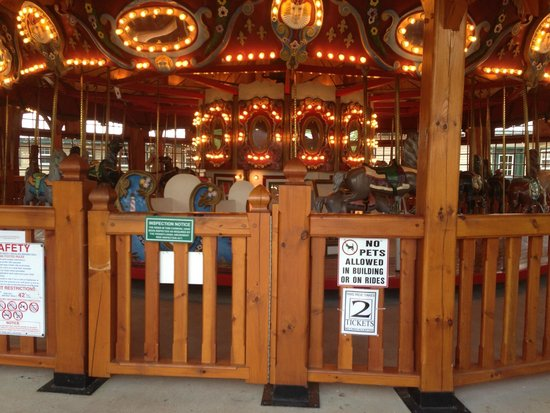 Twin Grove RV Resort & Cottages: Carousel