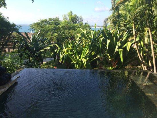 Four Seasons Resort Bali at Jimbaran Bay : Private Plunge Pool (great depth & temperature)