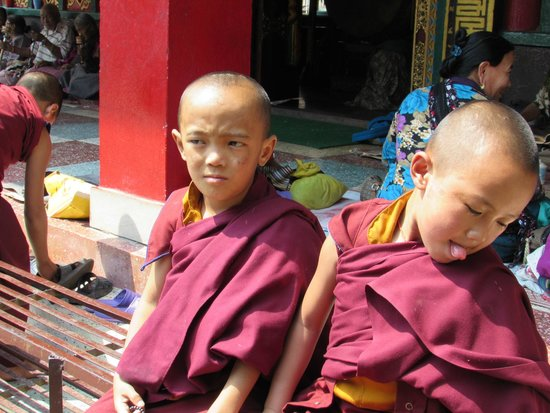 Boudhanath Stupa: Monacini