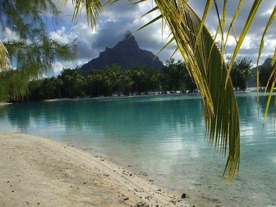 Le Meridien Bora Bora : Bora Bora vista dal resort