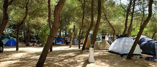 Camping Santa Maria di Leuca : Camping Villagio Santa Maria di Leuca