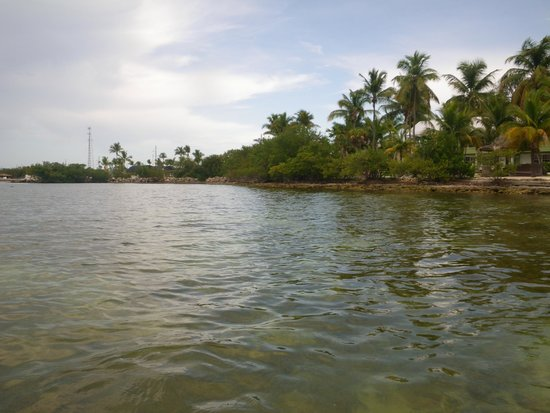 Lime Tree Bay Resort : View while snorkeling