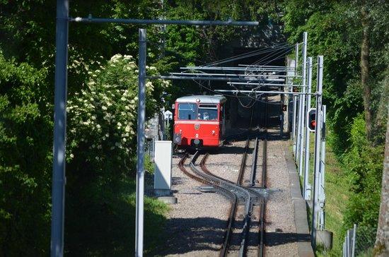The Dolder Grand: Dodler train