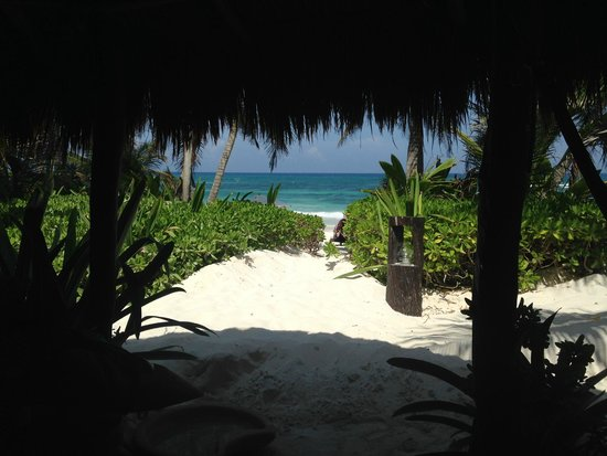 Cabanas La Luna : View from room