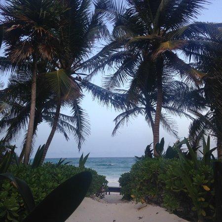 Cabanas La Luna: View from room