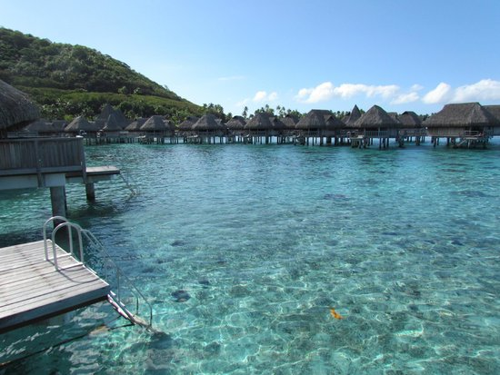 Sofitel Moorea Ia Ora Beach Resort : Maravilloso