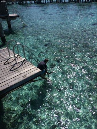 Sofitel Moorea Ia Ora Beach Resort: TERRAZA  DE LA CABAÑA CON DUCHA