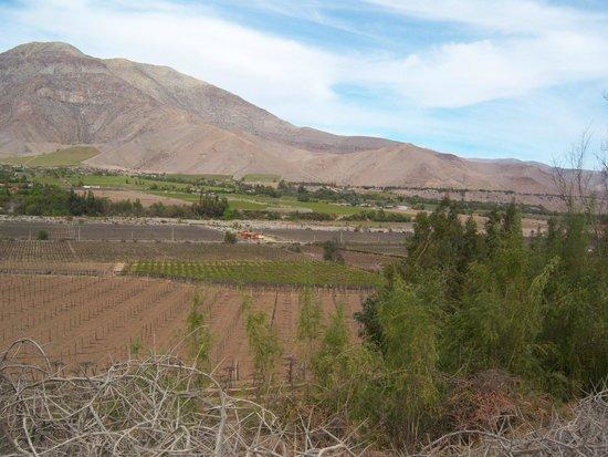 Valle del Elqui: Valle Elqui