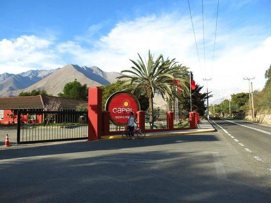 Valle del Elqui: Capel