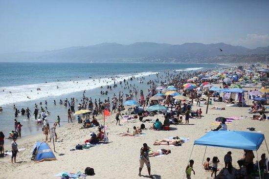 Santa Monica State Beach: Linda