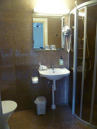 Crystal Plaza Hotel: bathroom